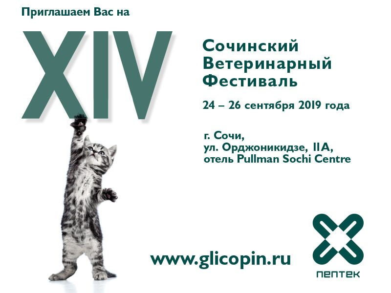 XIV_Vet_Festival_Sochi